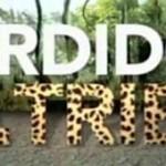 Perdidos na Tribo: inscrição para o novo reality show da Band está aberta